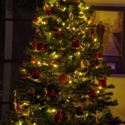 """""""Our tree, that was decorated by the kids over the entire month of December. It's our tradition, to put the tree with the lights up ready for the 1. Advent and then the kids each put one to two ornaments up each day. Like that you see the tree change and shape and develop into something beautiful. ' A Mommas view"""